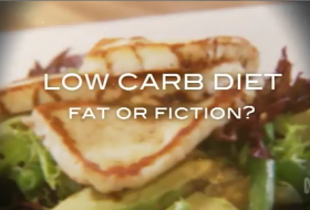 low-carb-diet-fat-or-fiction-demasi-catalyst